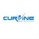 Curvine Web Solutions